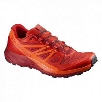 Salomon Sense Ride m1