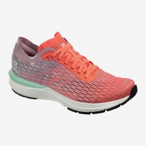 Salomon Sonic 3 Accelerate Womens 1